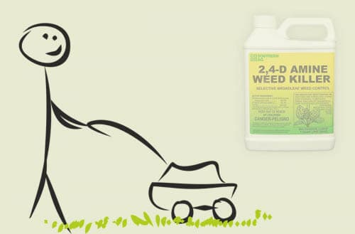 How long after spraying 2,4-D can I mow?