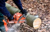 What size chainsaw do you need?