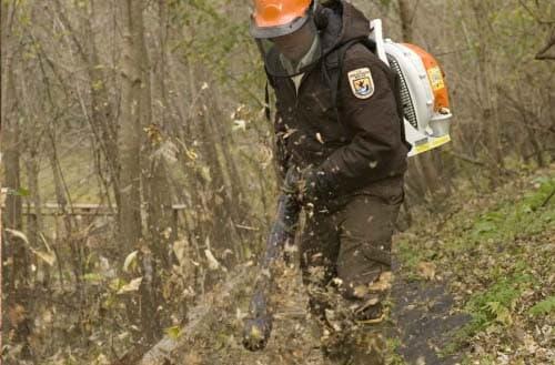 Why a leaf blower won't start?