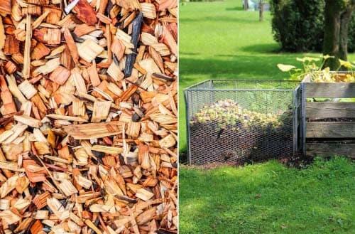 Mulch versus Compost